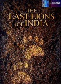 The Last Lions of India (2006) by BBC