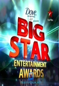Big Star Entertainment Awards (2010)
