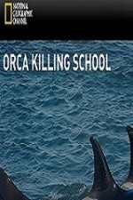 National Geographic – Orca Killing School – Documentary
