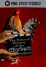 The Natural History of the Chicken (2000) – Documentary