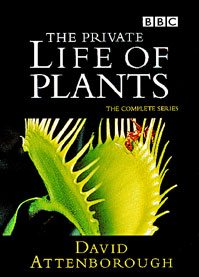 The Private Life of Plants (1995) – Documentary