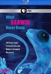 """Nova"" What Darwin Never Knew (2009) – Documentary"