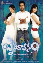 The Super Khiladi (Brindavanam) (2010)