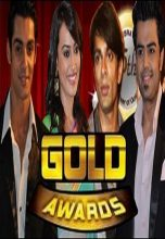 Gold Awards (2013)