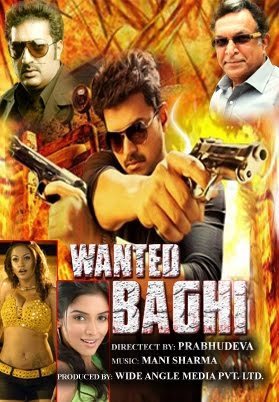 Wanted Baghi (2014)