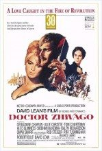 Doctor Zhivago (1965) (In Hindi)