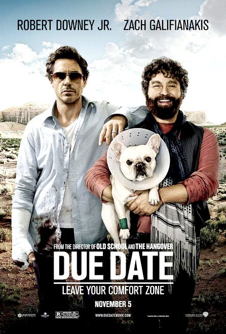 Due Date (2010) (In Hindi)