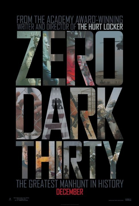 Zero Dark Thirty (2012) (In Hindi)