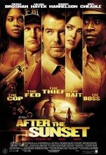 After the Sunset (2004) (In Hindi)