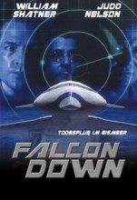 Falcon Down (2001) (In Hindi)