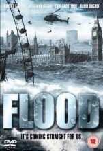 Flood (2007) (In Hindi)