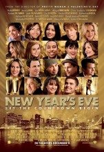 New Year's Eve (2011) (In Hindi)