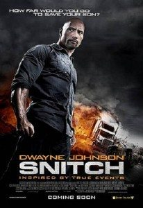 Snitch (2013) (In Hindi)