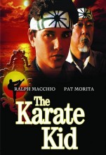 The Karate Kid (1984) (In Hindi)