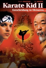 The Karate Kid, Part II (1986) (In Hindi)