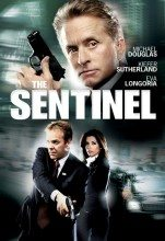 The Sentinel (2006) (In Hindi)