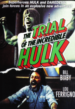 The Trial of the Incredible Hulk (1989) (In Hindi)