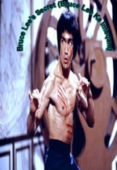 Fighter Bruce Lee - Full Length Action Hindi Movie - YouTube