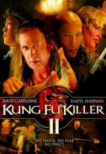 Kung Fu Killer 2 (2009) (In Hindi)
