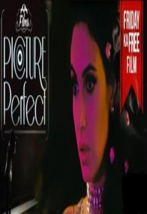 Picture Perfect (2015)