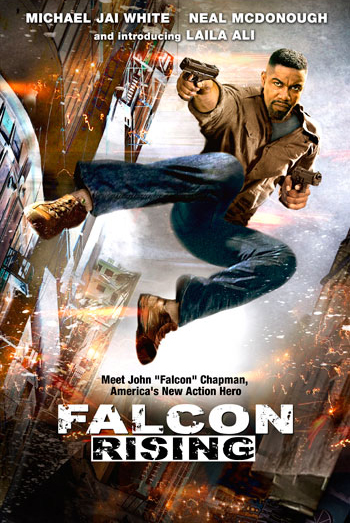 Falcon Rising 2014 In Hindi Full Movie Watch Online -7173