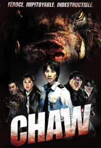 Chawu (2009) (In Hindi)