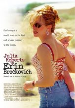 Erin Brockovich (2000) (In Hindi)