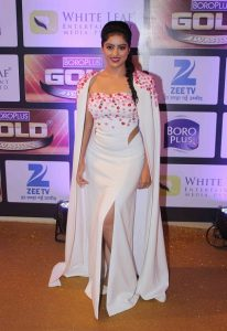 Zee Gold Awards (2016)