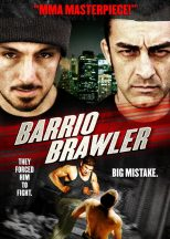 American Brawler (2013) (In Hindi)