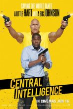 Central Intelligence (2016) (In Hindi)