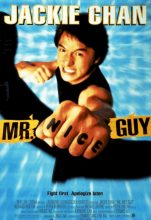 Mr. Nice Guy (1997) (In Hindi)
