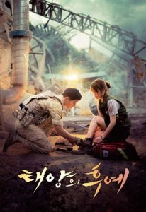 Descendants of the Sun (2016) (In Hindi)