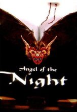 Angel of the Night (1998) (In Hindi)
