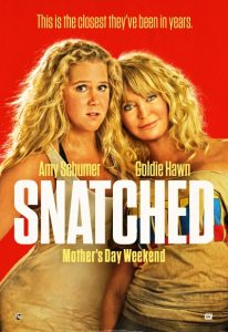 Snatched (2017) (In Hindi)
