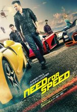 Need for Speed (2014) (In Hindi)