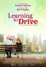 Learning to Drive (2014) (In Hindi)
