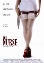 The Nurse (1997) (In Hindi)
