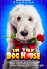In the Dog House (2014) (In Hindi)
