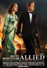 Allied (2016) (In Hindi)