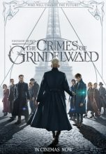 Fantastic Beasts – The Crimes of Grindelwald (2018) (In Hindi)