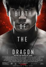 Birth of the Dragon (2016) (In Hindi)