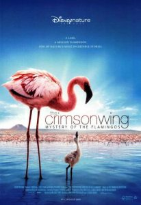 The Crimson Wing – Mystery of the Flamingos (2008) (In Hindi)