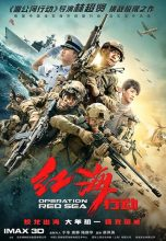 Operation Red Sea (2018) (In Hindi)