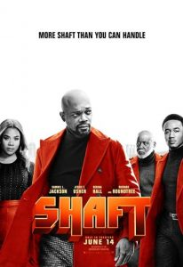 Shaft (2019) (In Hindi)