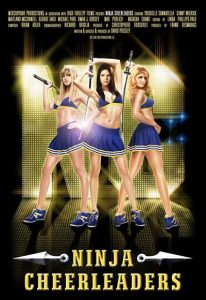 Ninja Cheerleaders (2008) (In Hindi)