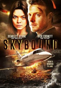 Skybound (2017) (In Hindi)